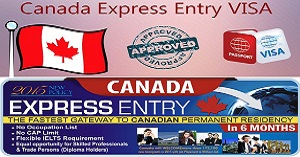 Agro Exportation business & Canada Express Entry
